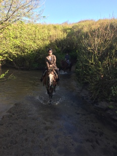 We rode through some tree and muddy terrain